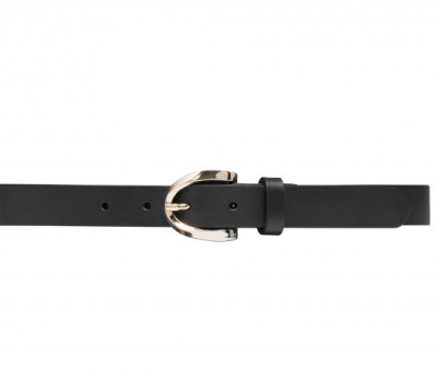 Narrrow Belt Gold Depeche